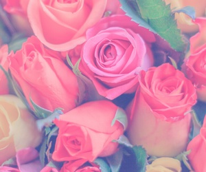 background, roses, and we heart it image