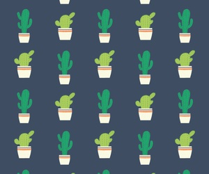 cactus, patterns, and plants image
