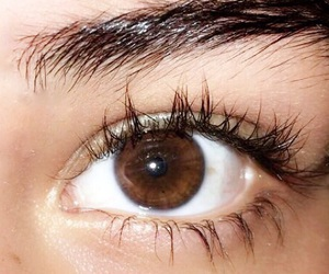 beautiful, brown, and eye image