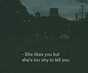 shy, quotes, and grunge image