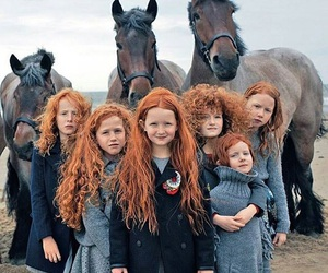 horse, red, and redhead image