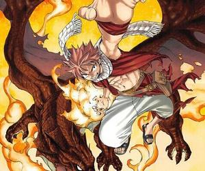 fairy tail, natsu, and anime image