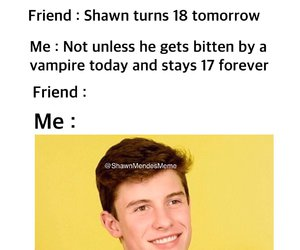 too late and shawn mendes image