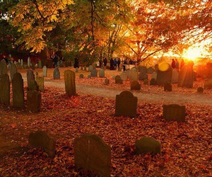 autumn, fall, and cemetery image