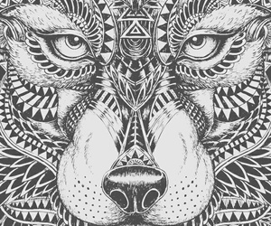 mandala and wolf image