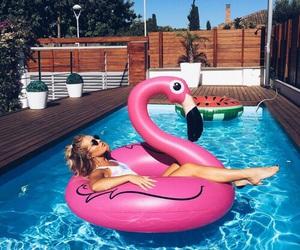 summer, pool, and flamingo image