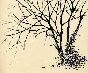 black and white, branches, and graphite image