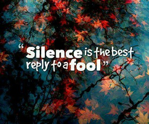quotes, silence, and fool image