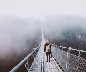 fog, nature, and winter image