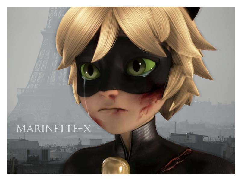 Marinette fanfic noir and chat My ideas