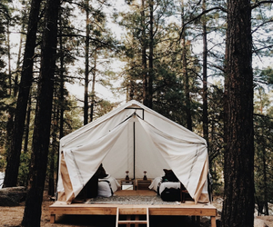 beautiful, camping, and photography image