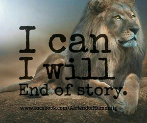 i can, i will, and end of story image