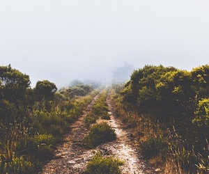 adventure, path, and beautiful image