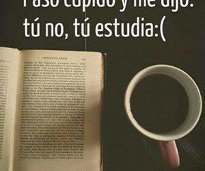 cupido, book, and study image
