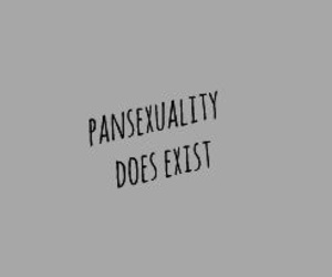 sexuality, pansexual, and lgbt+ image