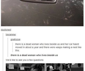 supernatural, dean winchester, and tumblr image