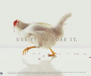 awesome, graphic, and funny ads image