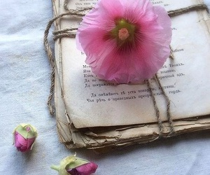 books, romantic, and shabby chic image