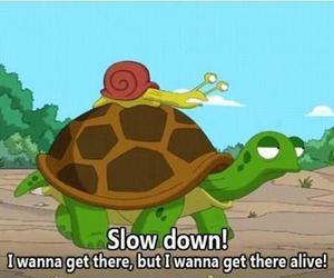 funny, turtle, and snail image