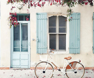 flowers, bike, and blue image