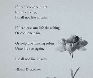 emily dickinson, poem, and poetry image
