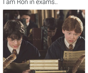 harry potter, exam, and funny image