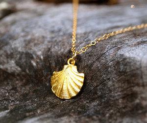etsy, florida, and sea shells image