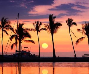 sunset, palms, and sky image
