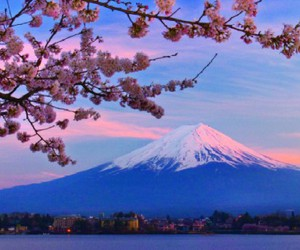 beautiful and japan image