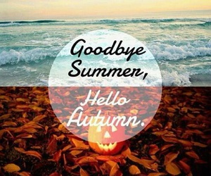 autumn, summer, and fall image