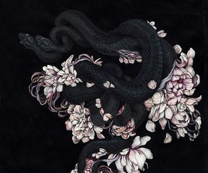 snake, flowers, and black image
