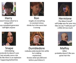 harry potter, funny, and tag yourself image