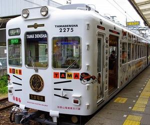 cat, railway, and train image