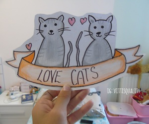 cats, heart, and we heart it image