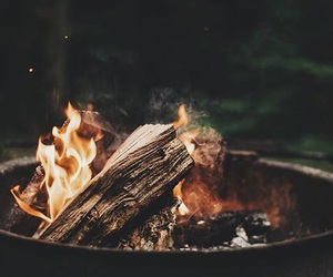 fire and forest image