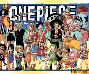 one piece, manga, and anime image