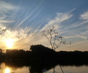 br, ibirapuera, and sp image
