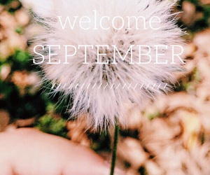 welcome september, autumn, and September image
