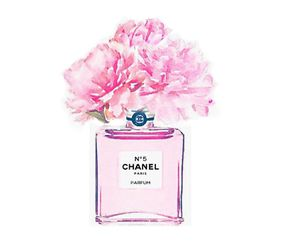 fashion, chanel, and draw image