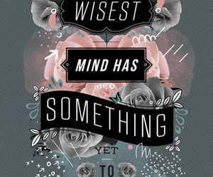 quote, learn, and mind image