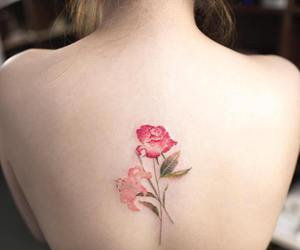 alternative, color, and roses image