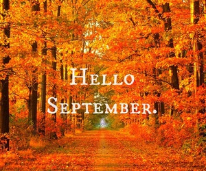 September, autumn, and orange image