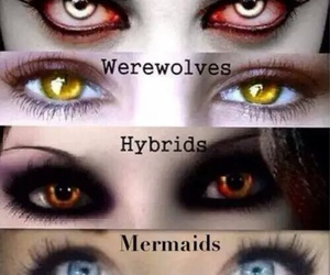 vampire, mermaid, and hybrid image