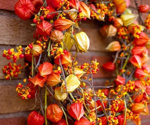 autumn, wreath, and fall image