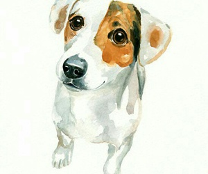 animal, art, and dog image