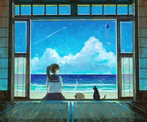 summer, cat, and ocean image