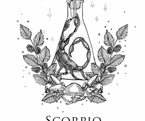 horoscope and scorpio image