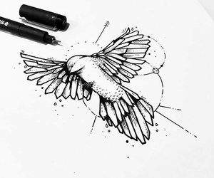 ave, bird, and tattoo image