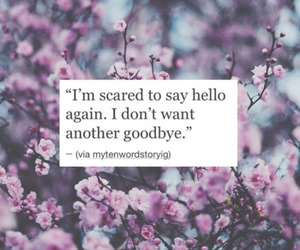 quote, hello, and love image