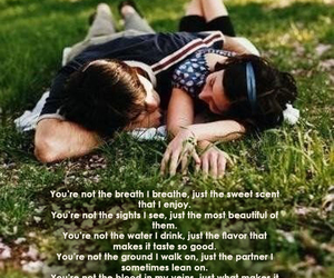 beautiful, ground, and see image